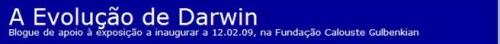 blog-sobre-darwin2