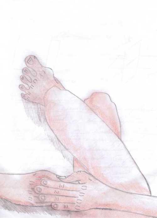 José, 9º A - Observação do corpo