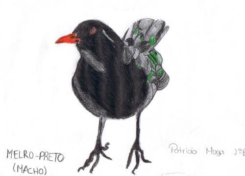 Patrícia Moga, 7ºB