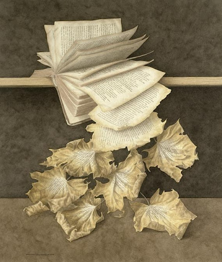 Book in autumn, Jonathan Wostenholme (via Lecturimatges)