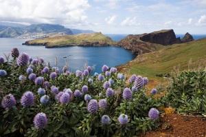 fig. 2 - Ilha da Madeira