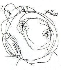 Fig.2 - Desenho de criança com 2 anos e meio de idade